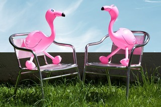 flamingo-1554180_960_720.jpg